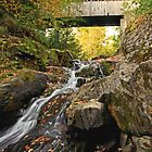 Bridge and the Waterfall at Mill Road by AntonLee