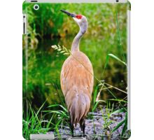 Is it a Bird?  Or is it a Plane? iPad Case/Skin