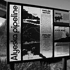 Alyeska Pipeline by Juergen Weiss