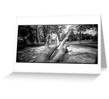 Pinhole Tree Greeting Card
