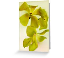 Sour Grass Greeting Card