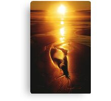 VISUALIZE  RADIANT Canvas Print