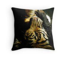 Tiger Truths Throw Pillow