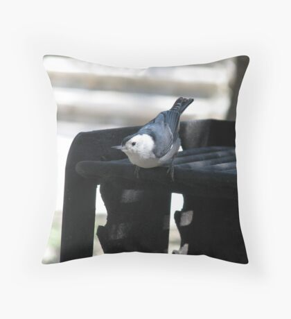 """What! No coals yet?"" White breated Nuthatch Throw Pillow"
