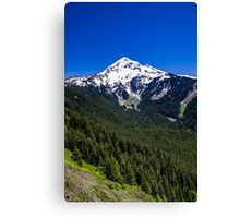 Mt Hood From Bald Mountain Canvas Print