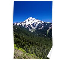 Mt Hood From Bald Mountain Poster