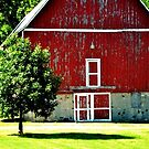 Red Barn Doors by Brian Gaynor