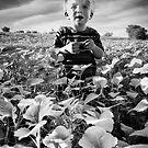 Field Boy by Bob Larson