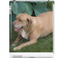 Dog Relaxes iPad Case/Skin