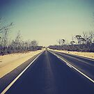 Give me a sign somewhere...Crossing the Nullarbor Plains by JuliaWright