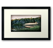 Reflected Lowlight Framed Print