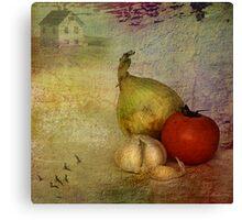 Tomato & onions Canvas Print
