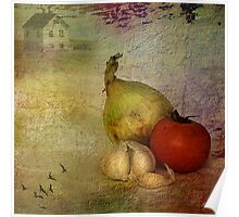 Tomato & onions Poster