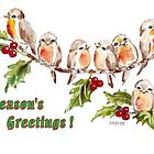 7 Little Robins - Season's Greetings! by Maree Clarkson