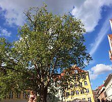 My tree in the city by HeklaHekla