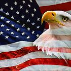God Bless America by Ann  Van Breemen