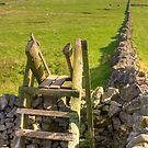 The peak district near Castleton by Ian Middleton