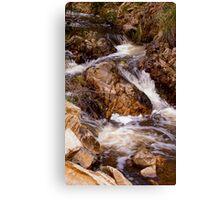 Bubbling brook Canvas Print