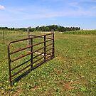 Open Gate by Jack Ryan