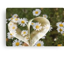 I love flower, I know boring - But I really do !! Canvas Print
