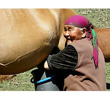 Mare Milking in Kyrgyzstan Photographic Print
