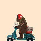 scooter bear by bri-b