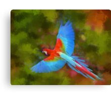 Colorful Macaw Canvas Print