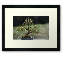 Bonsai! Framed Print
