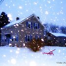 Home, Sweet Home... by Debbie Robbins