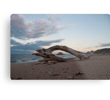 Remote Beach Metal Print