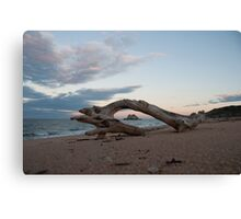 Remote Beach Canvas Print