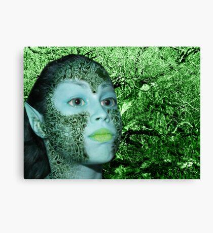 Forest Pixie Canvas Print