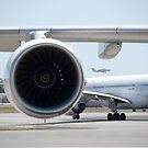 A380 Engine by palmerphoto