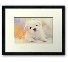 White ball of fur Framed Print