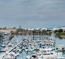 Townsville Panorama by palmerphoto