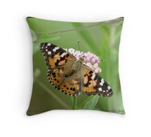 Painted Lady butterfly... Throw Pillow