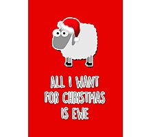 All I want for Christmas is ewe Photographic Print