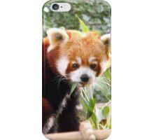 Red panda case iPhone Case/Skin