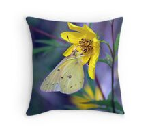 Orange Sulphur butterfly on wild Golden Aster... Throw Pillow