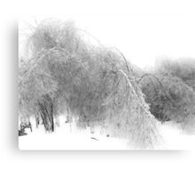 Ice Canopy Canvas Print