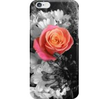 Colour rose on a black and white background iPhone Case/Skin