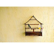 Bird in a Cage Photographic Print