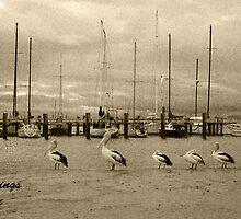 Hastings Vic by WendyJC