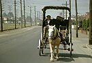 Tram and Horse and Cart St Georges Rd Croxton 19601203 0007 by Fred Mitchell