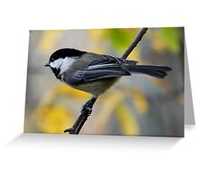 Chickadee in Autumn: Ready to Spring Greeting Card