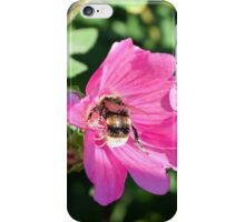 Bee on Beautiful Pink Flower iPhone Case/Skin