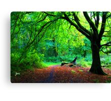 Alternative tree view red leaves Canvas Print