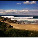 Wollongong City Beach by steen
