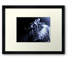Black & Blue. Werewolf Framed Print