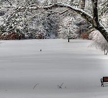 Snow on the 1st Tee by Monica M. Scanlan